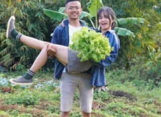 Cặp vợ chồng trẻ rời thành phố về rừng sâu sống cuộc đời an nhiên