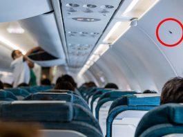 Ký hiệu tam giác đen trên thân máy bay. Ảnh: Travel and Leisure