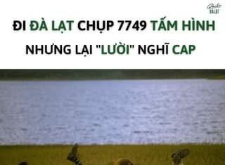 """Dành cho người chơi hệ """"LƯỜI NGHĨ CAP""""  Đi Đà Lạt chụp được 7749 tấm hình mà nghĩ quài hổng ra Caption thì lưu ngay list này về nhé!!! 1. Ngày tháng đẹp biết ba"""